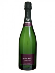 Ambriel Classic Cuvee Redfolds Vineyard Sussex England